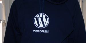 Wordpresströja